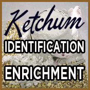 Ketuchm_Ident_175x175