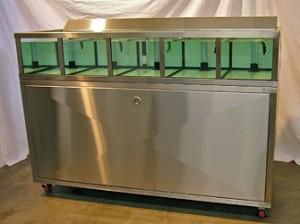 Shellfish Tank